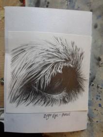 Dog eye pencil sketch