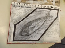 Mackerel tonal drawing